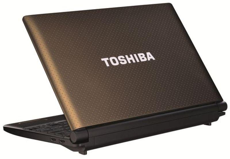 "Toshiba Nb520-124 Netbook, Intel Atom N2600 1.6ghz, 1gb Ram, 320gb Hdd, 10.1"" Led, Noopt, Intel Gma, Webcam 11hrs Battery, Windows 7 Starter"