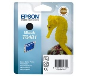 Epson T0481 Black Ink Cartridge with RF Tag for Stylus Photo R300 R500