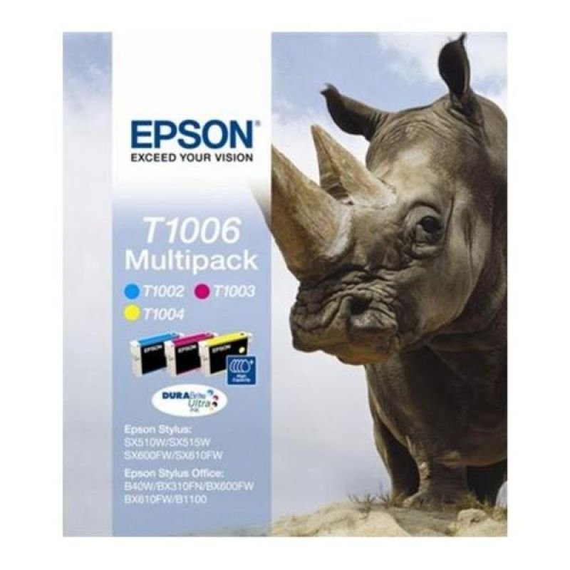 Epson T1006 Multipack Ink Cartridge