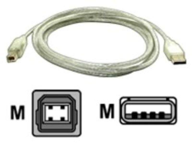 Startech  USB Device Cable (Transparent) 1.8m / 6FT