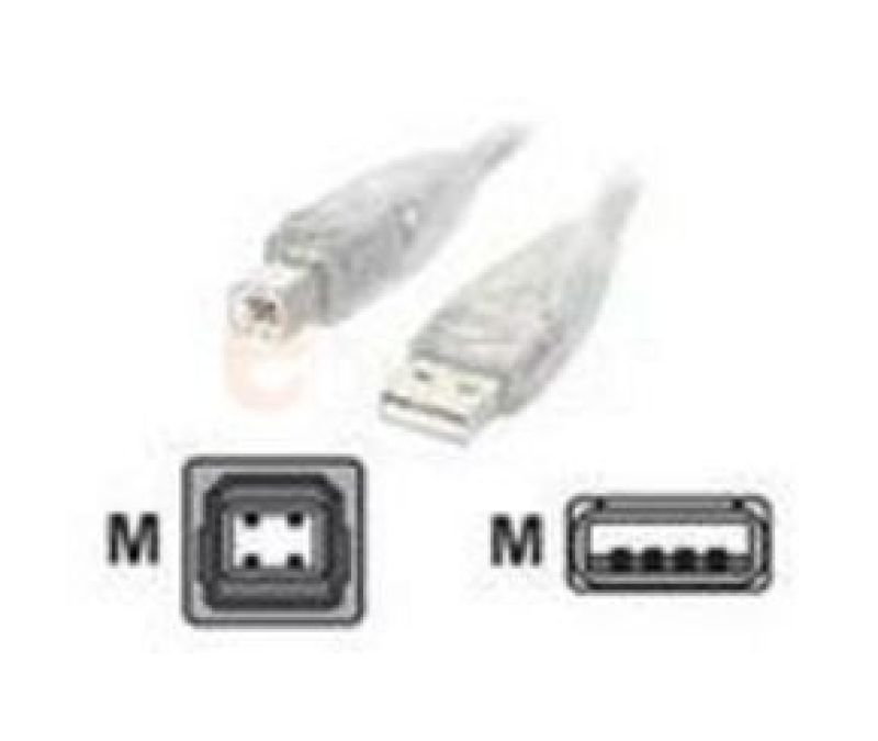 Startech Transparent USB 2.0 - Cable A-b M/M 15Ft.