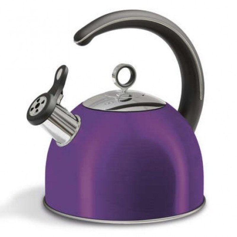 Morphy Richards 46503 2.5l Whistling Kettle Plum