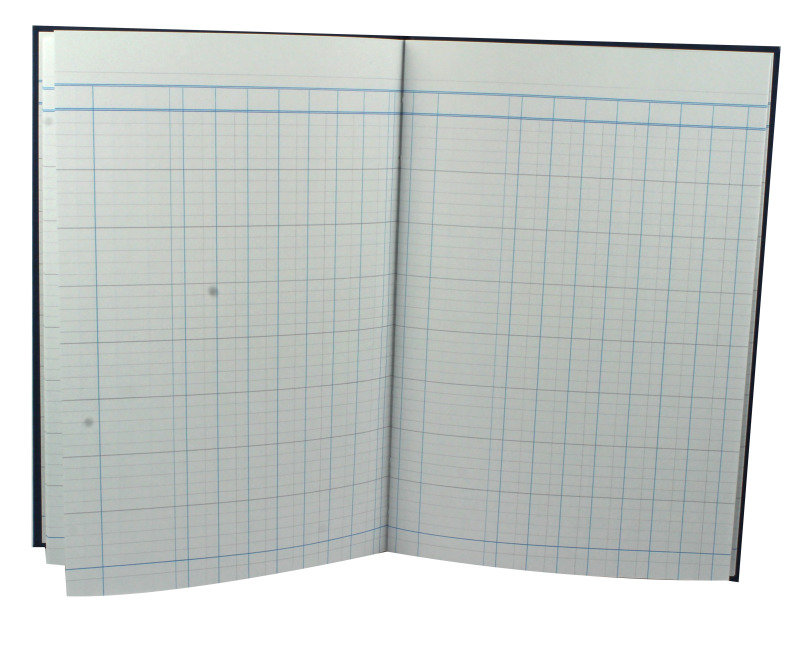 Guildhall Analysis Book 31 Series 7Columns  80 Pages