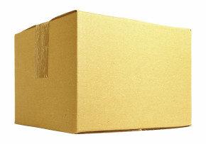 Single Wall Carton 482X305X305MM Pack of 25