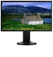"NEC MultiSync E201W 20"" LED LCD DVI-D Monitor"