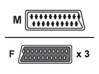 V7 Scart Splitter 3 Way 0.4m - Scart 1x M To 3x F Blk Retail