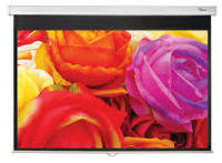 *Optoma DS-1123PMG+ - 2656 X 1660 16:10 White Projection Screen