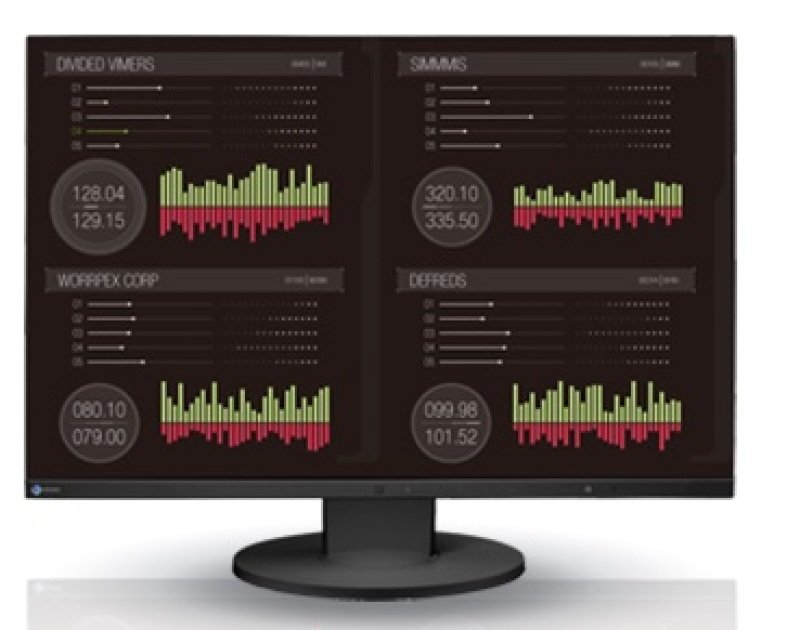 "Eizo EV2455 24"" LED HDMI Monitor"