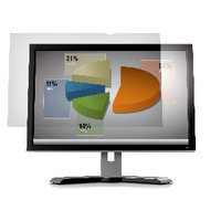 3M Frameless Anti-Glare Filter for Desktops 19in Widescreen 16:10