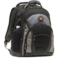 Wenger Swissgear Synergy Backpack