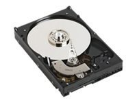 "Dell 2TB SATA 6Gb/s 7200 rpm 3.5"" Hot-Swap Hard Drive"