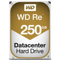 "WD Re 250GB 3.5"" SATA Enterprise Hard Drive"