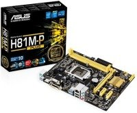 Asus H81M-P PLUS Socket 1150 VGA DVI HDMI 8 Channel Audio ATX Motherboard