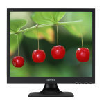 EXDISPLAY Hannspree Hx194dpb 19 Inch Square Monitor  Dvi  Speakers  1280 X 1024