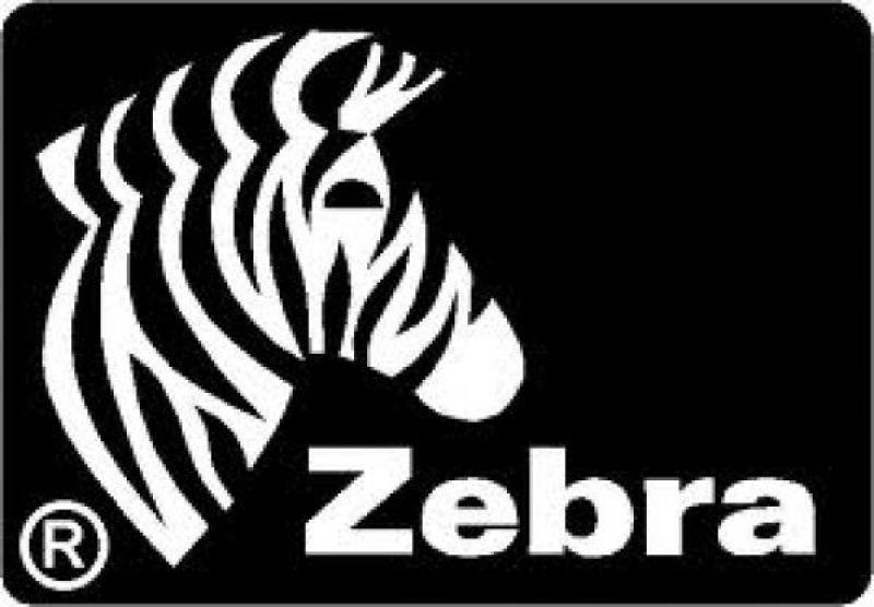 Zebra Color - PVC card - 30 mil - silver metalli