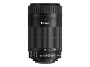 Canon EF-S 55-250mm f/4.0-5.6 IS STM Lens