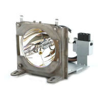 GO Lamps Projector lamp for NP07LP