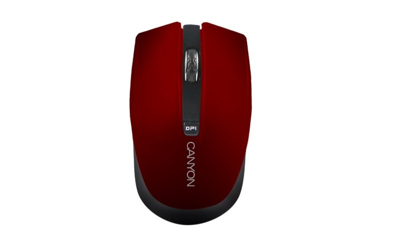Canyon middle sized nimble mouse -Red