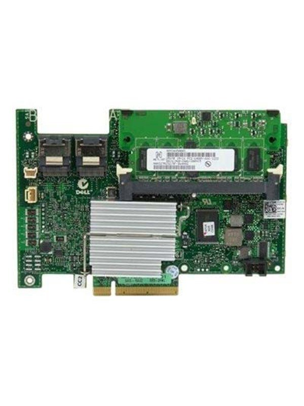 Dell PERC H700 Integrated storage controller (RAID)