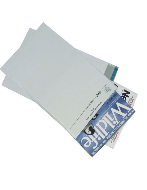 GoSecure Lightweight  Polythene Envelopes (Pack of 100)