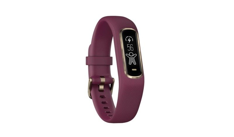 Garmin Vivosmart 4 Fitness Activity Tracker Merlot/rose Gold - Small/medium