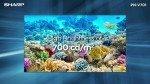 Sharps Electronics PNV701 70'' Large Format Led Display Full HD