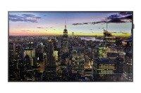 Samsung 49'' Smart Display With Cisco - Webex Video Conferencing Bundle